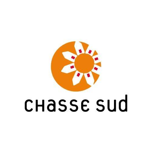 centre commercial chasse sud